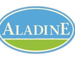 ALADINE ( sellos, manualidades, tinta)